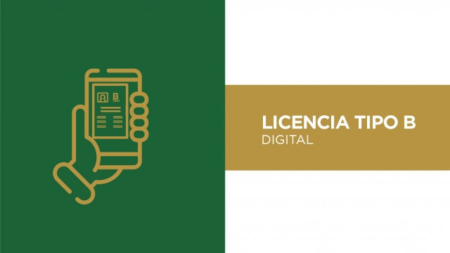 Digitalización de la licencia Tipo B para taxistas